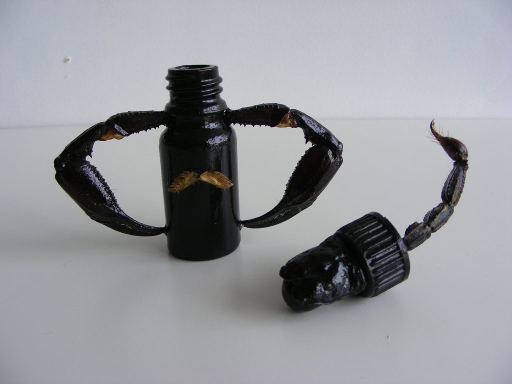 Curio (scorpion), 2011. Mixed media.