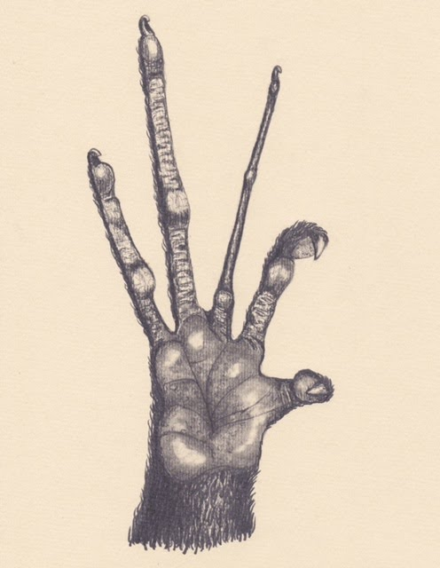 The Hand of the Demon, 2014. Graphite on paper. 30x20cm's.