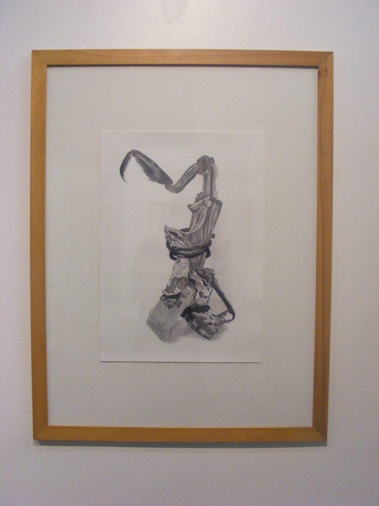 Curio (mantis), 2011. Graphite on cartridge paper. 59x42cm's.