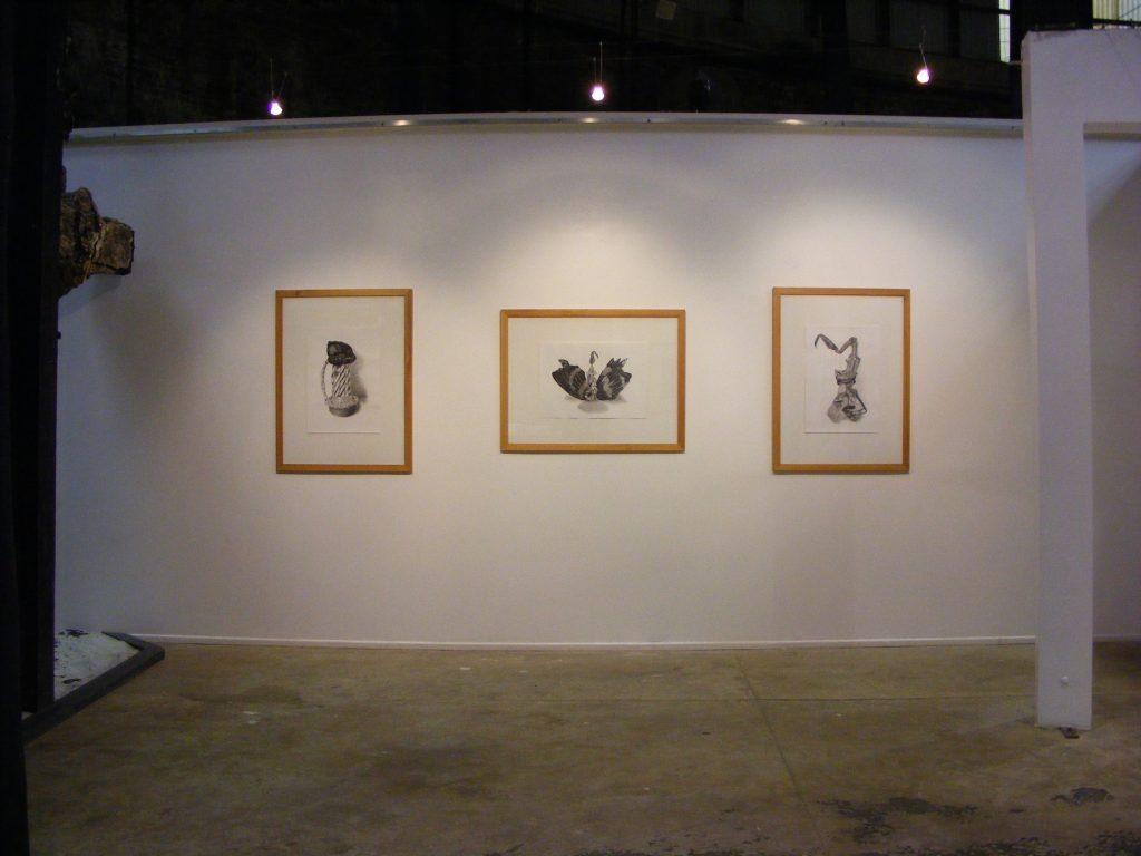 Transfauna exhibition view.
