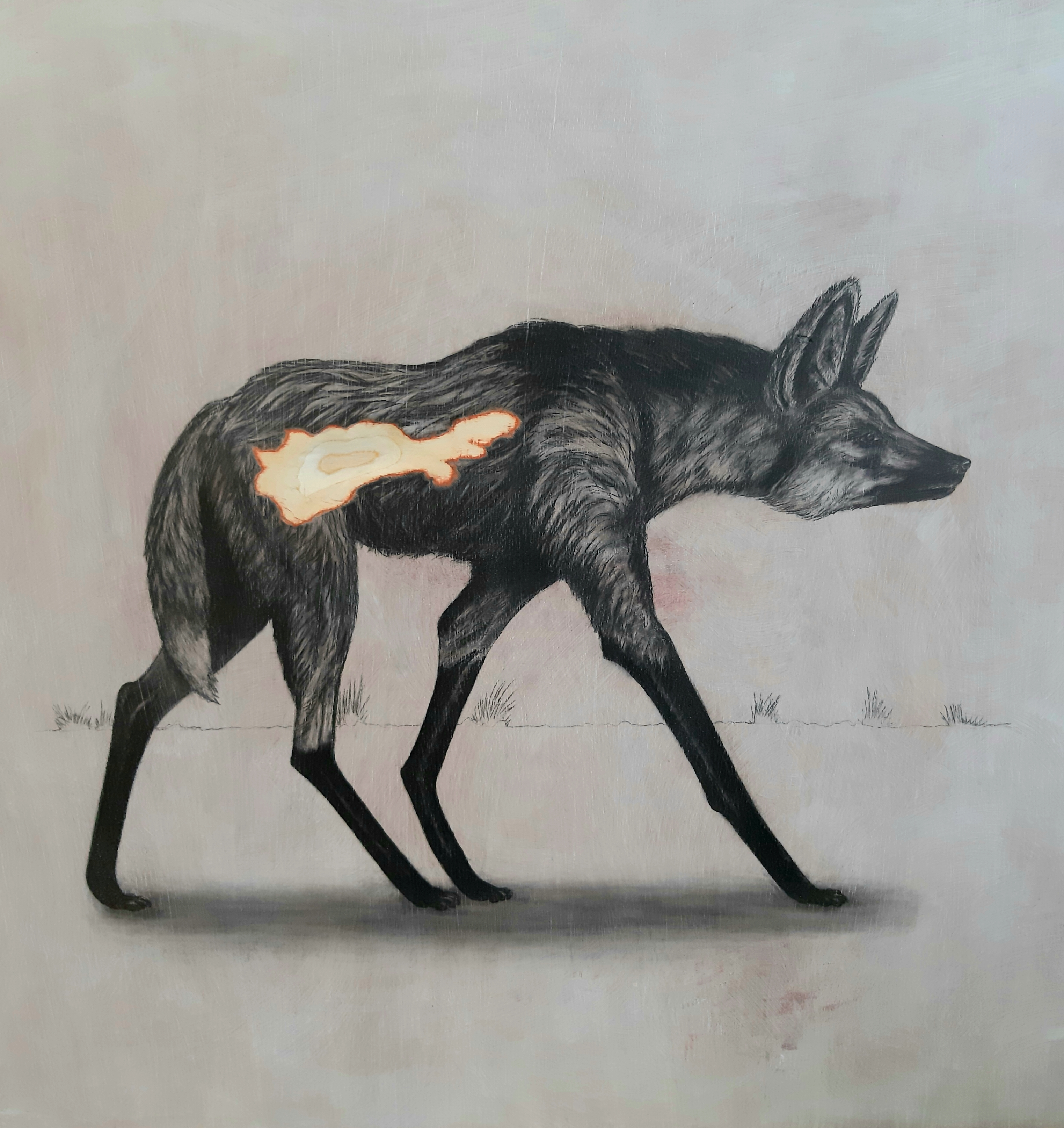 The Maned Wolf, 2019. Graphite on white washed plywood that is then sanded.  65 x 65 x 4 cm. Framed in white varnished obeche. £1,500.