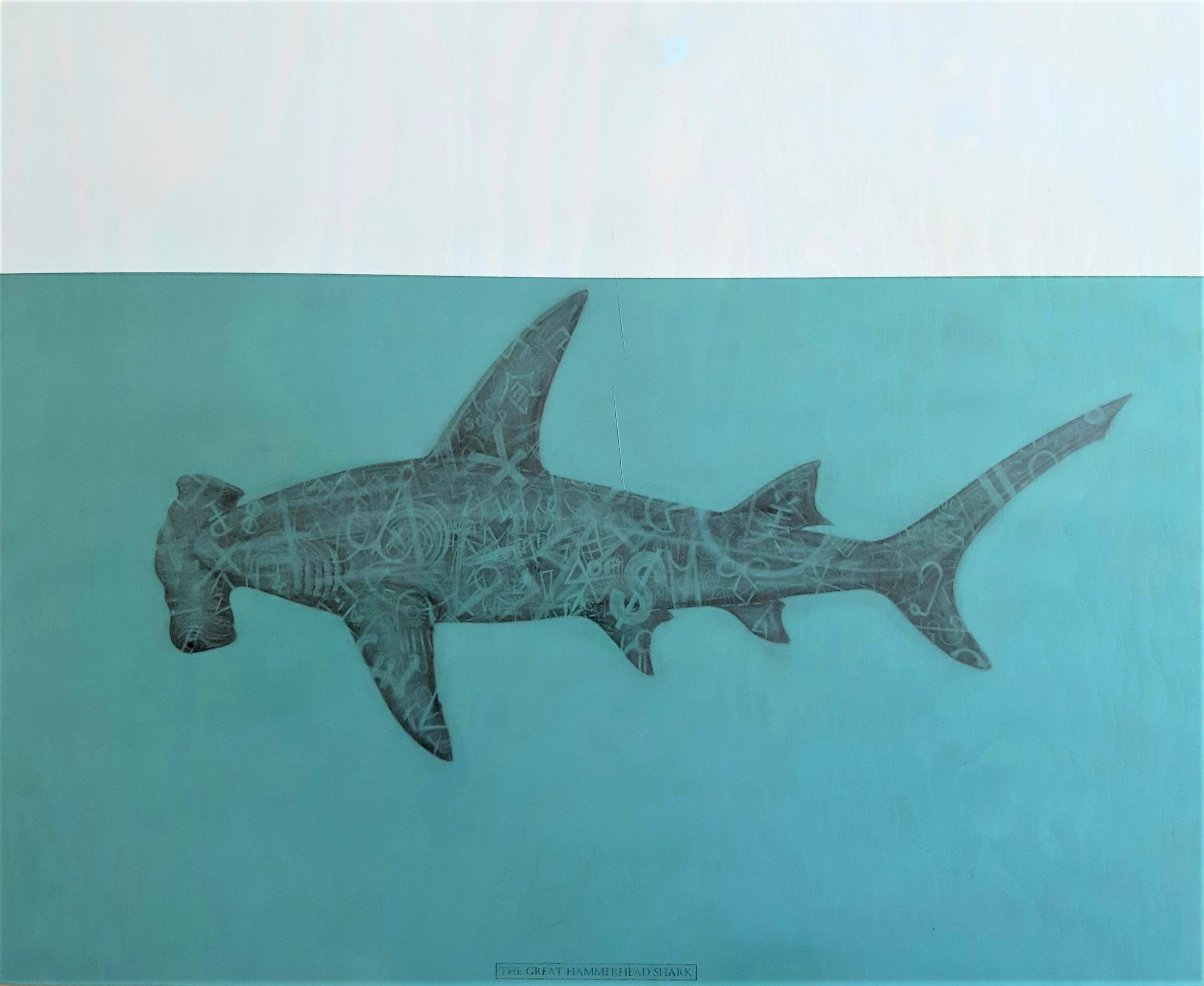 The Great Hammerhead Shark, 2020. Graphite and acrylic on plywood. Framed in white varnished obeche. 70 x 85 x 4 cm. £1,600
