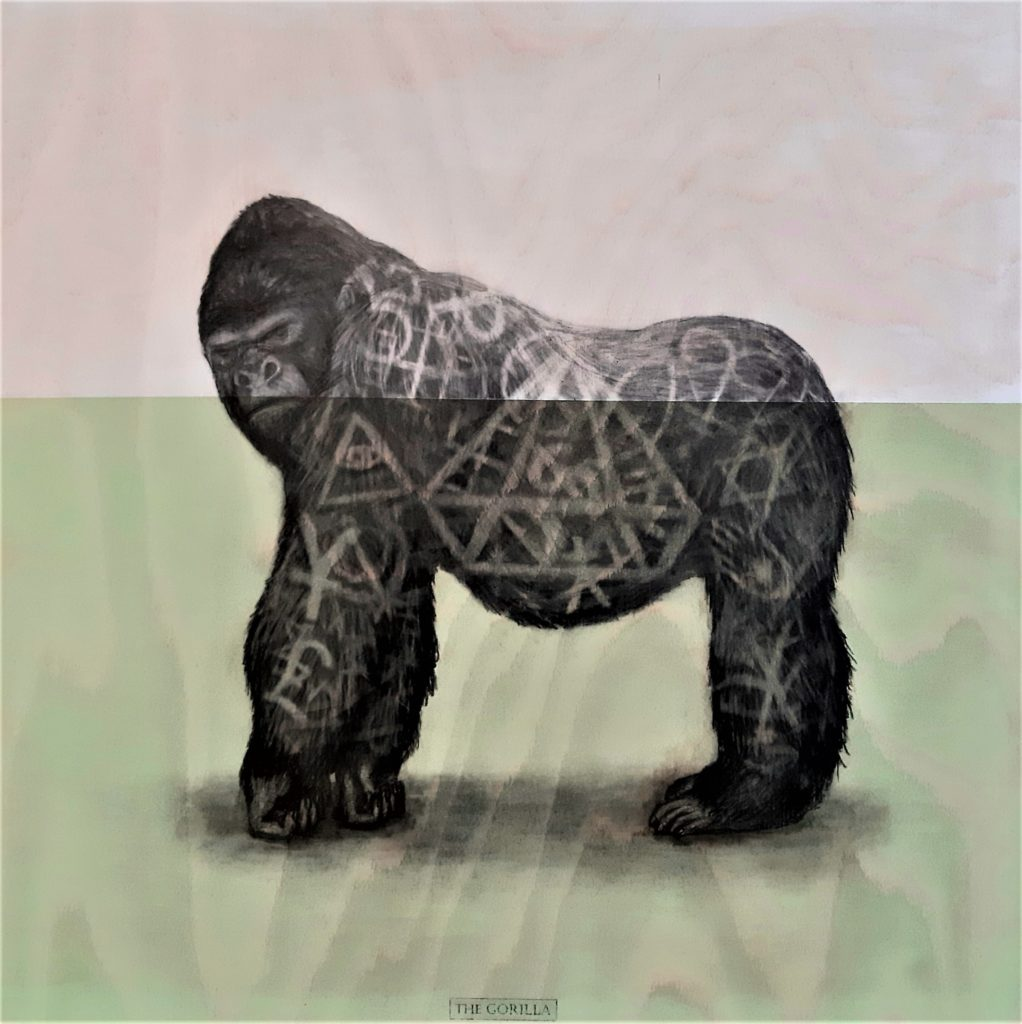 The Gorilla, 2020. Graphite and acrylic on plywood. 65 x 65 cm.