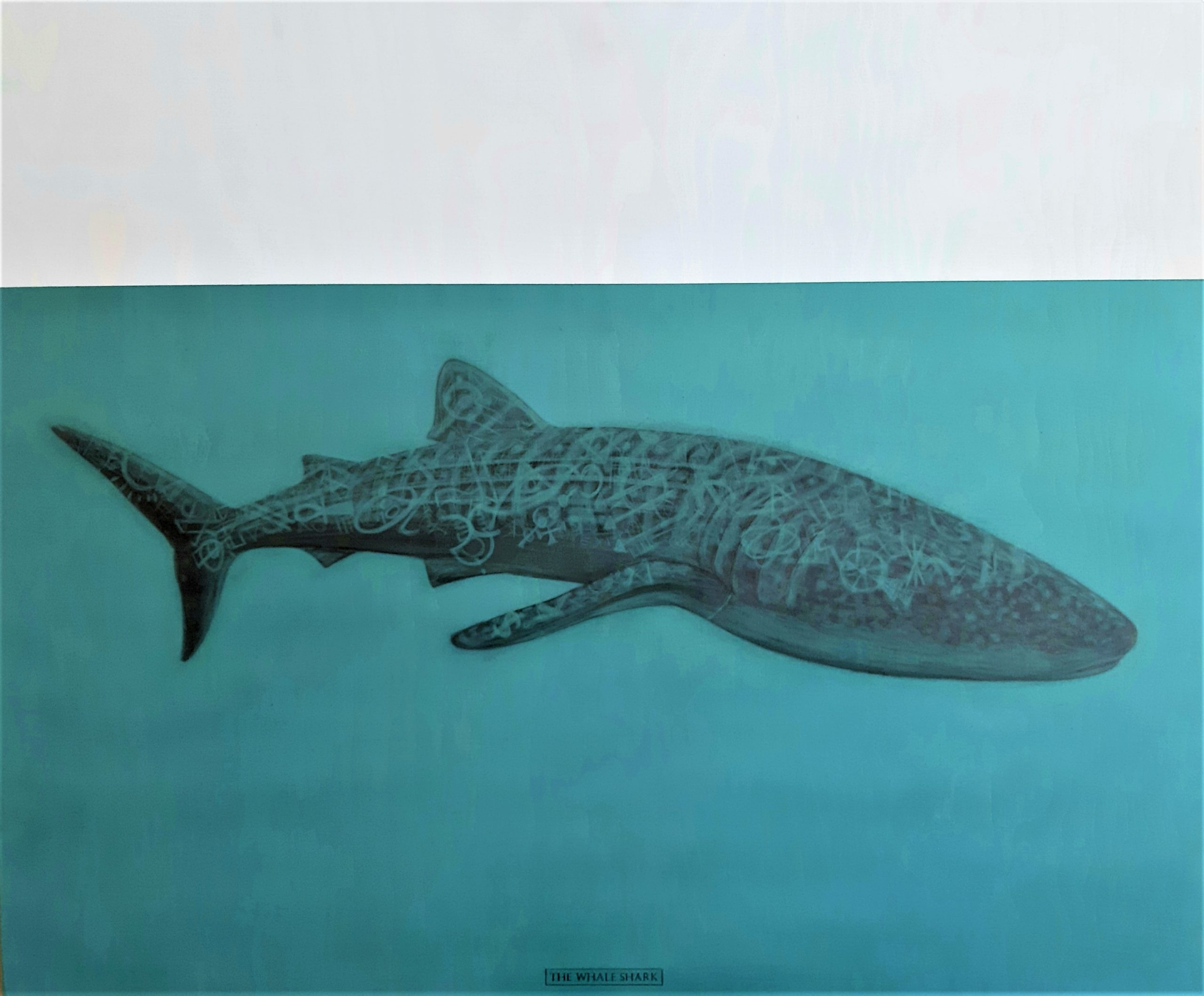 The Whale Shark, 2020.  Graphite and acrylic on plywood. Framed in white varnished obeche. 70 x 85 x 4 cm. £1,600