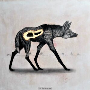 The Maned Wolf, 2019. Graphite on white washed plywood that is then sanded. 65 x 65 x 4 cm. Framed in white varnished obeche. £1,200.
