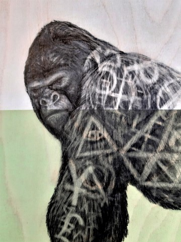The Gorilla, 2020. Graphite and acrylic on plywood. 65 x 65 x 4 cm.