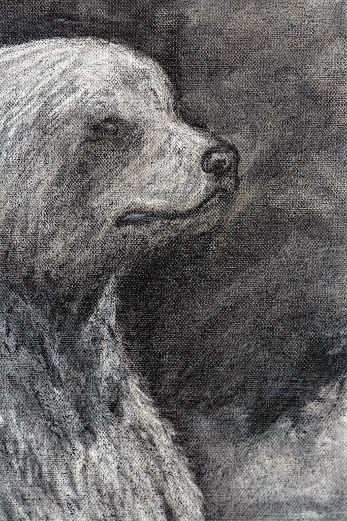 The Grizzly Bear detail