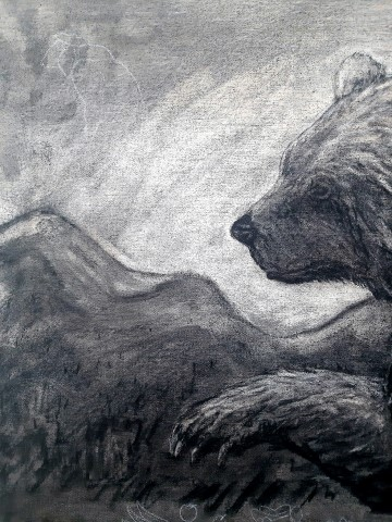 The Grizzly Bear, 2021. Charcoal and chalk on canvas. 87 x 72 cm. detail