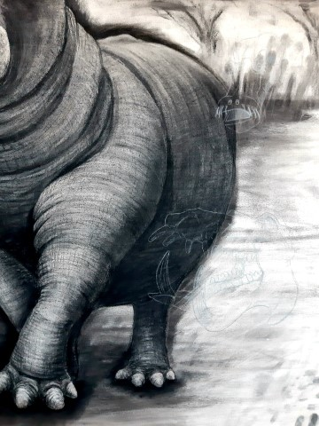 The Hippopotamus, 2021. Charcoal and chalk on primed canvas. 160 x 140 cm. Detail 1