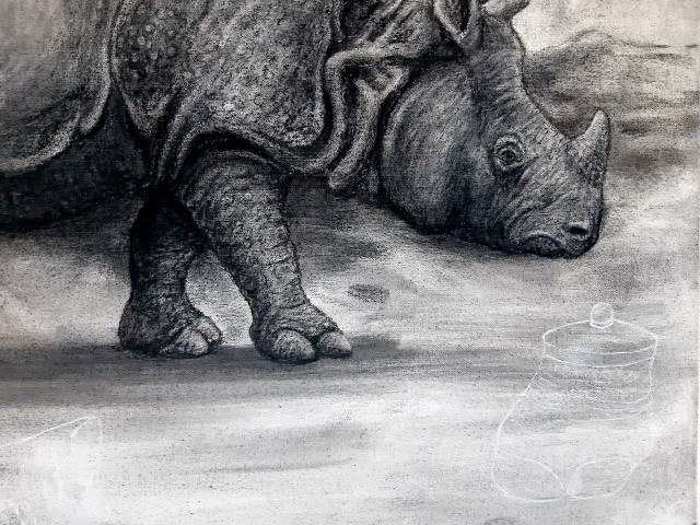 The Indian Rhinoceros, 2021. Charcoal and chalk on primed canvas. 61 x 71 cm. Detail 2