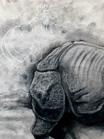The Indian Rhinoceros, 2021. Charcoal and chalk on primed canvas. 61 x 71 cm. Detail 4