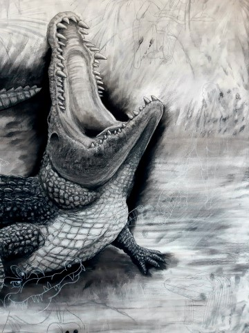 The Nile Crocodile, 2021. Charcoal and chalk on primed canvas. 160 x 140 cm. Detail 3