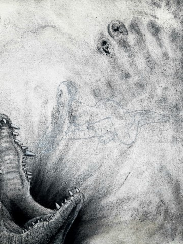 The Nile Crocodile (small), 2021. Charcoal and chalk on primed canvas. 71 x 61 cm. detail 4