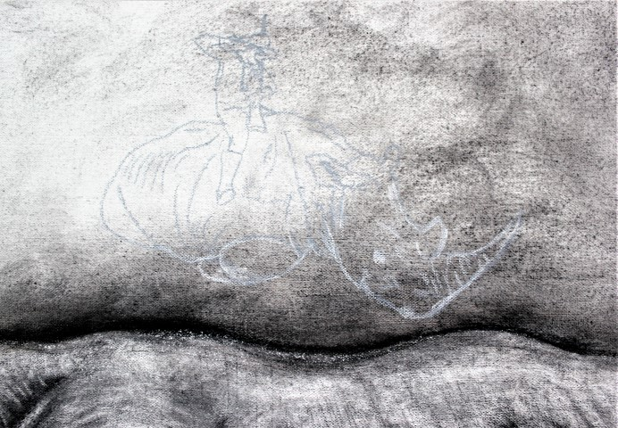 The Northern White Rhinoceros, 2021. Charcoal and chalk on primed canvas. 61 x 71 cm. Detail 1