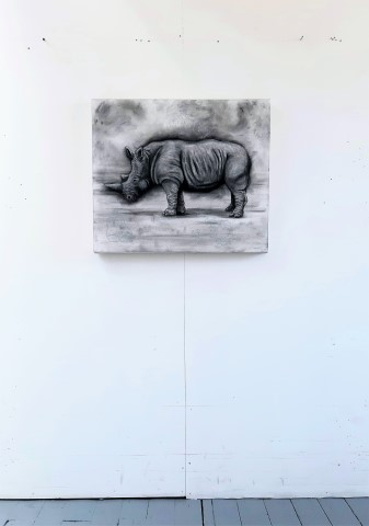 The Northern White Rhinoceros, 2021. Charcoal and chalk on primed canvas. 61 x 71 cm. Floor view