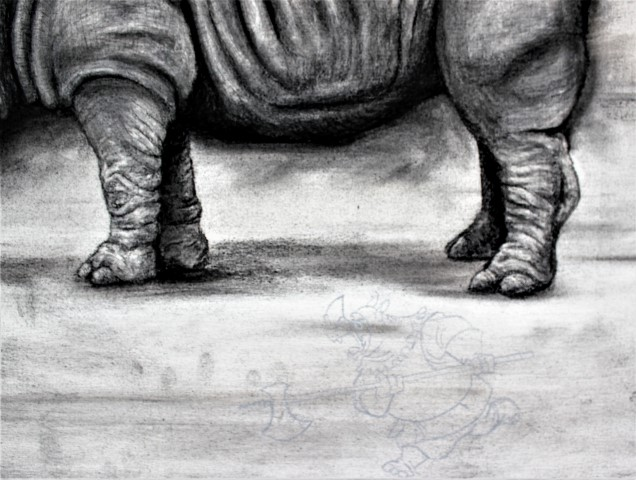 The Northern White Rhinoceros, 2021. Charcoal and chalk on primed canvas. 61 x 71 cm. detail 2