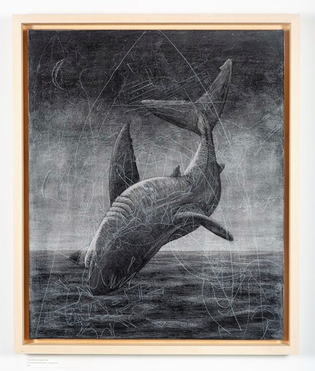 Breach 4, 2020. Charcoal and chalk on primed canvas. Framed in lime waxed tulip. 86 x 72 x 6 cm.