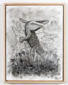 Crocodile in motion study, 2021. Charcoal and chalk o n cartridge paper. Framed in varnished obeche. 40 x 30 x 4 cm.