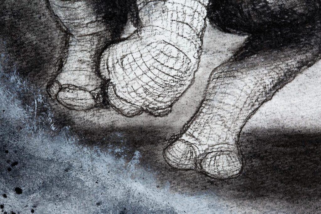 The Black Rhinoceros detail