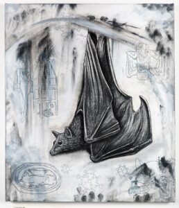 The Flying Fox 2021. Charcoal and chalk on primed canvas. 71 x 61 cm.