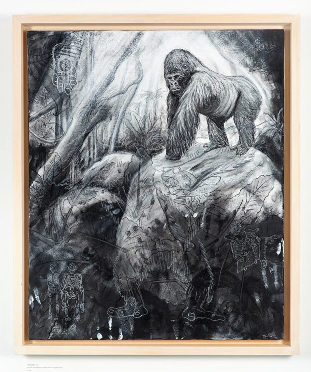 The Gorilla, 2021. Charcoal and chalk on canvas. Framed in lime waxed tulip. 95 x 80 x 6 cm.