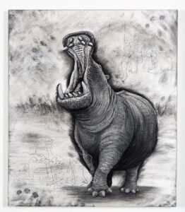 Hippopotamus (small), 2021. Charcoal and chalk on primed canvas. 71 x 61 cm.