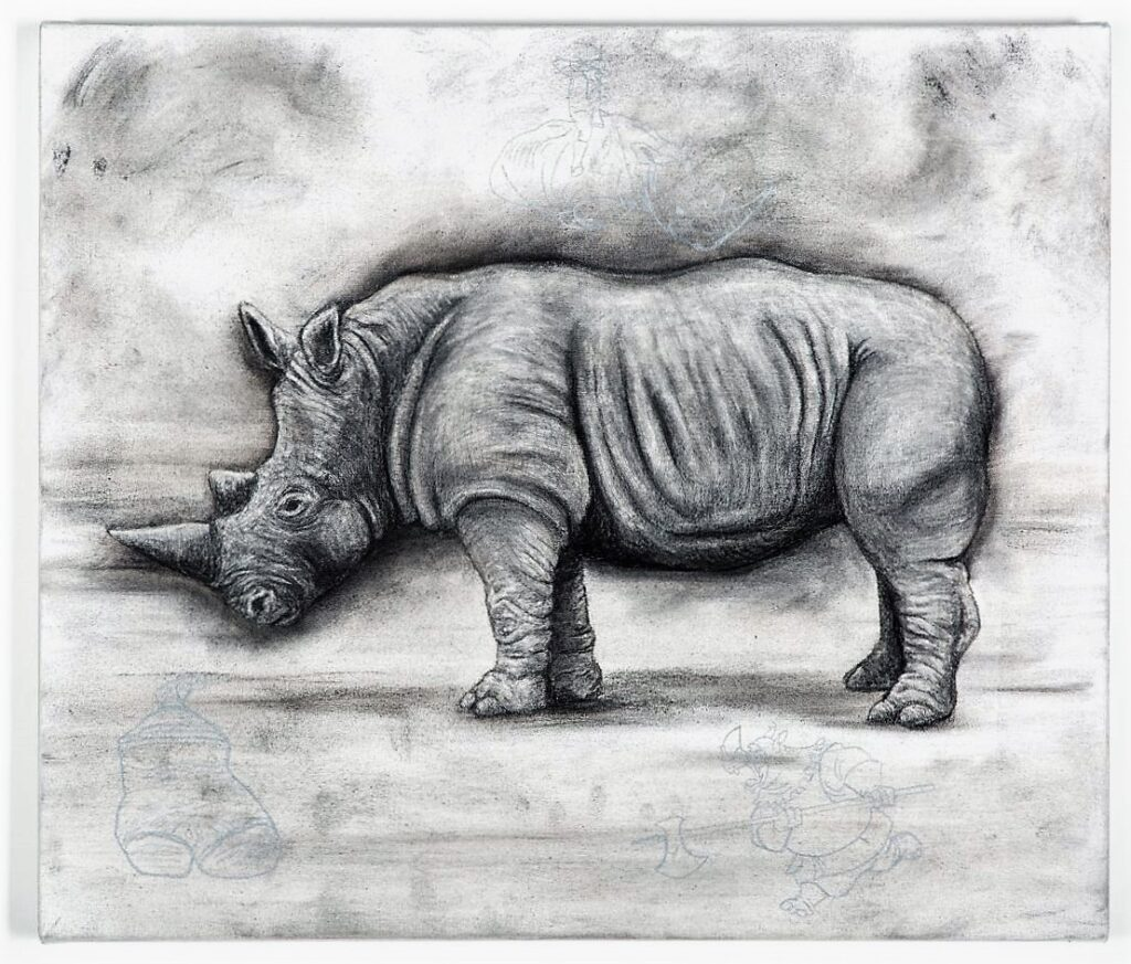 The Northern White Rhinoceros, 2021. Charcoal and chalk on primed canvas. 61 x 71 cm.