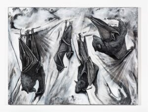 Roost, 2021. Charcoal, gesso and chalk on canvas. 120 x 160 cm