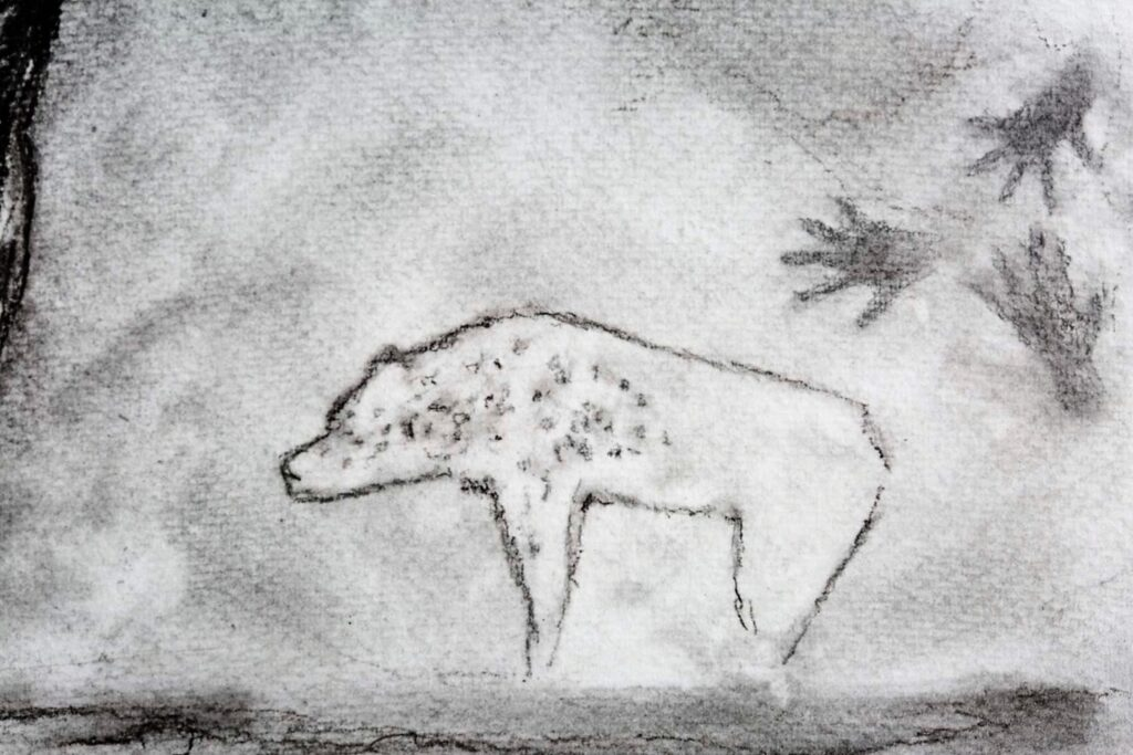 The cave bear detail