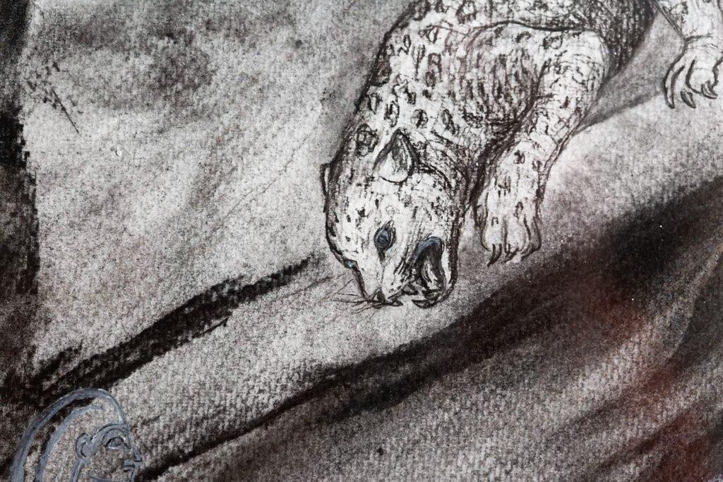 Croc study detail.
